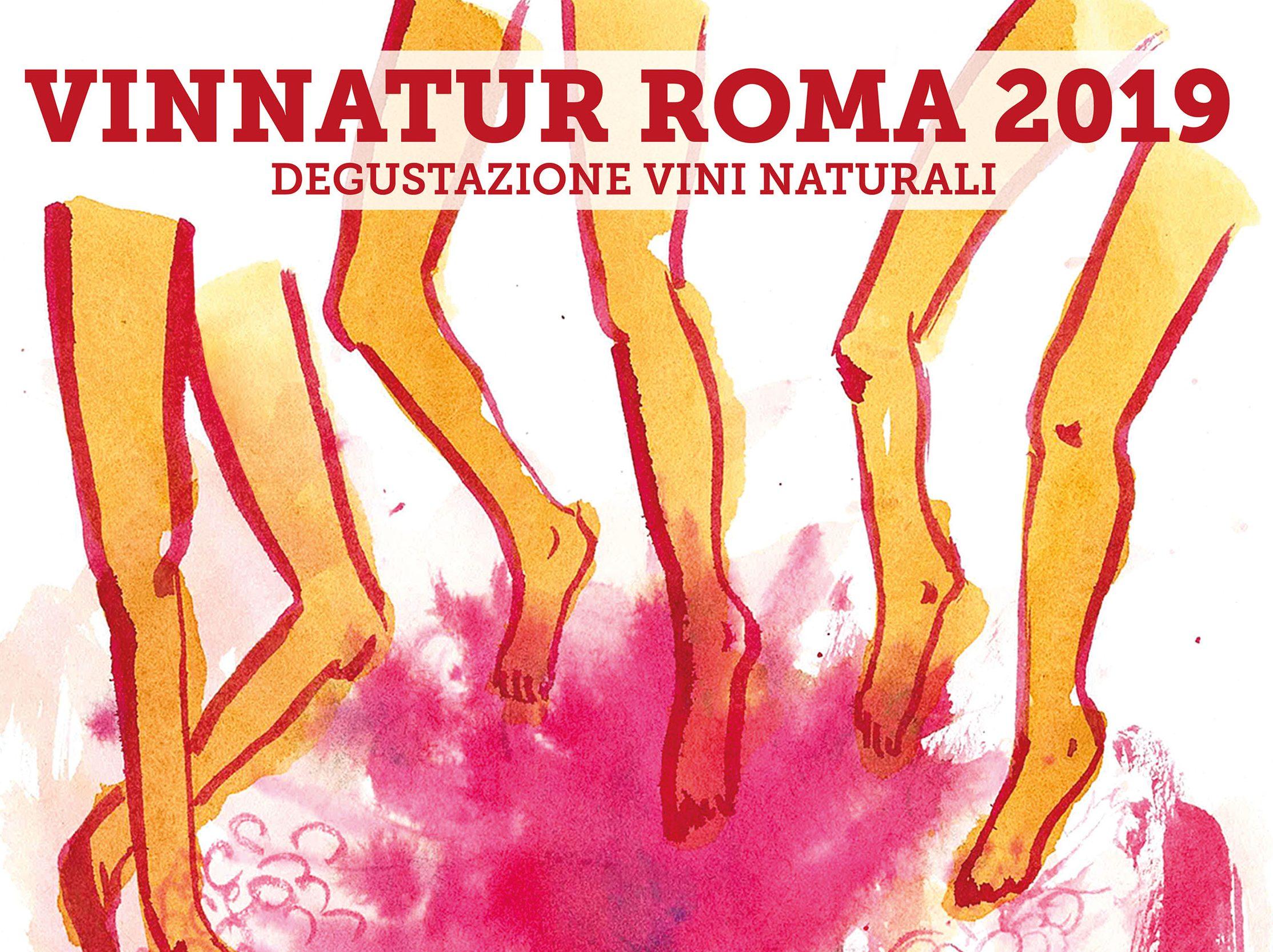 Vinnatur Roma 2019 23 24 Febbraio Vinnatur Org